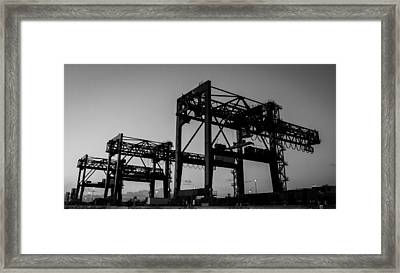 Cranes Framed Print by Julian Sula