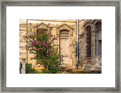 Crape Myrtle And Gonzales County Jail Museum Framed Print by Silvio Ligutti