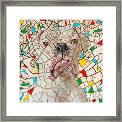 Crazed Framed Print by Judy Wood