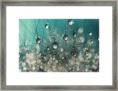 Crazy Cactus Sparkles Framed Print by Sharon Johnstone