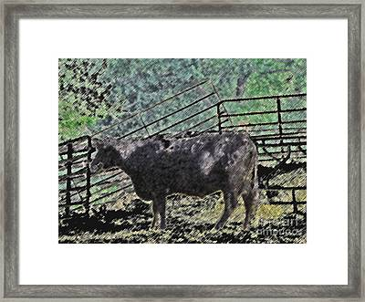 Crazy Cow Framed Print by Minding My  Visions by Adri and Ray