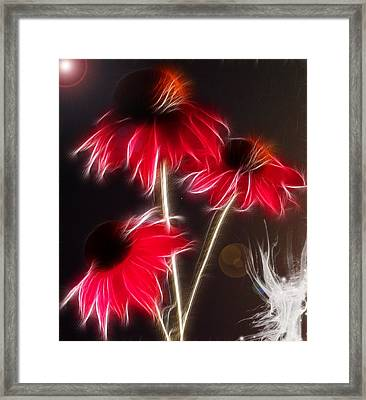 Creation Framed Print by Patricia Motley