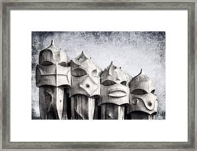 Creatures Of La Pedrera Bw Framed Print by Joan Carroll