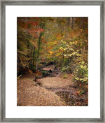 Creek Bed In Autumn - Fall Landscape Framed Print by Jai Johnson