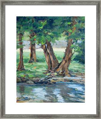 Creek Reflections Framed Print by Sandra Harris