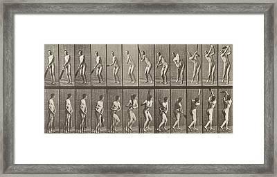 Cricketer Framed Print by Eadweard Muybridge