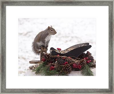 Critter Christmas Framed Print by Marty Maynard