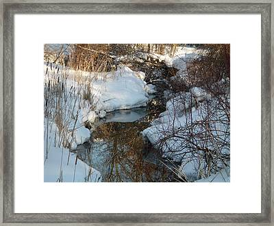 Crooked Reflections Framed Print by Erica  Darknell