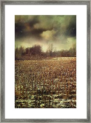 Crop Field In Early Winter After First Snow Framed Print by Sandra Cunningham
