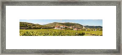 Crop In A Vineyard, Weissenkirchen Framed Print by Panoramic Images