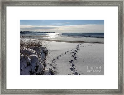 Crossing Paths Framed Print by Joe Faragalli
