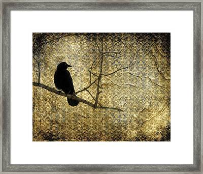 Crow In Damask Framed Print by Gothicolors Donna Snyder