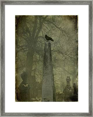 Crow On Spire Framed Print by Gothicolors Donna Snyder