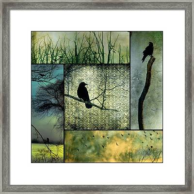 Crows In Nature Collage Framed Print by Gothicolors Donna Snyder