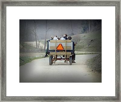 Cruising Framed Print by Steven  Michael