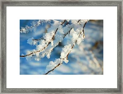 Crystal Cool Framed Print by Scott Nicol