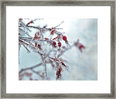 Crystal Rose Framed Print by Julie Magers Soulen