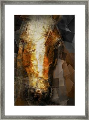 Cubist Portrait Of A Horse Framed Print by Randall Nyhof