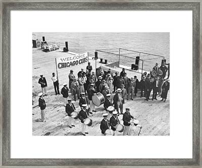 Cubs Arrive At Catalina Island Framed Print by Underwood Archives