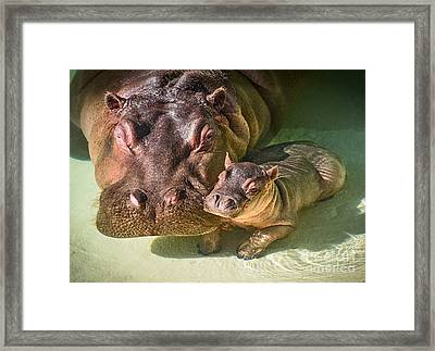 Cuddle With Mom Framed Print by Jamie Pham