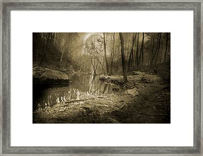 Culmination Framed Print by Betsy C Knapp
