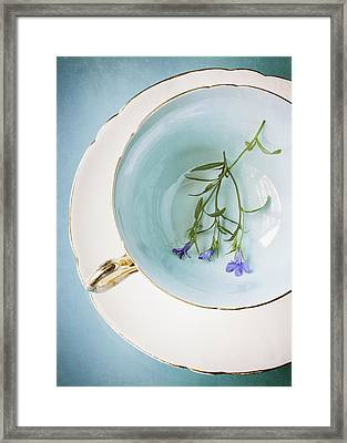 Cup Of Three Framed Print by Amy Weiss
