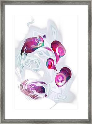 Curious Fish Framed Print by Anastasiya Malakhova
