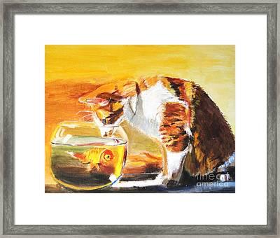 Curious Kitty Framed Print by Judy Kay