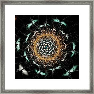 Curious Moth Framed Print by Anastasiya Malakhova