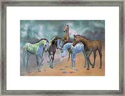 Curious Ones Framed Print by Betsy C Knapp