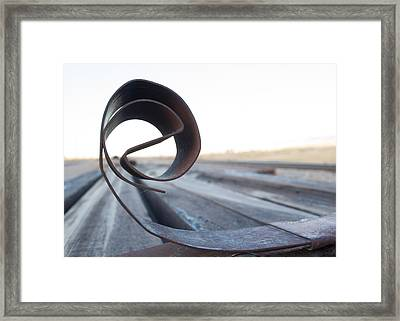 Curled Steel Framed Print by Fran Riley
