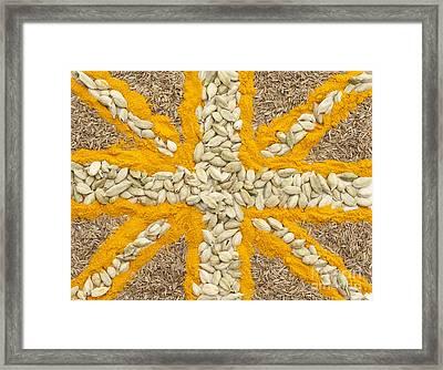 Curried Flag Framed Print by Anne Gilbert