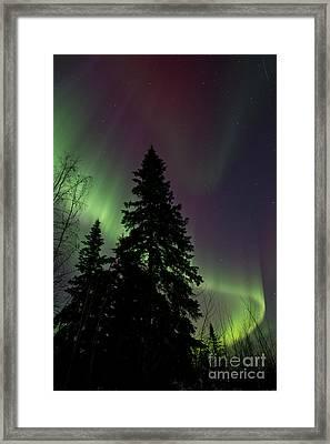 Curtain Of Colours Framed Print by Priska Wettstein
