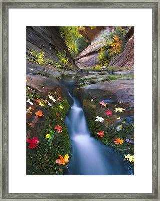 Cut Into Autumn Framed Print by Peter Coskun