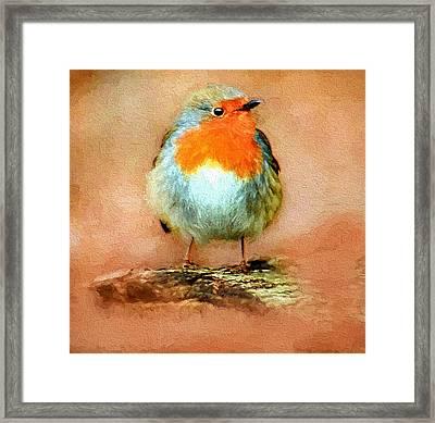 Cute Bird Framed Print by Yury Malkov