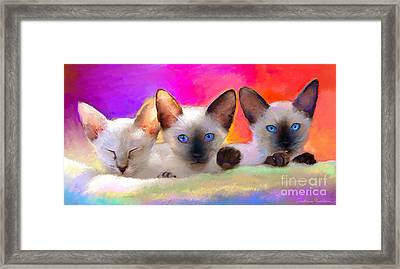 Cute Siamese Kittens Cats  Framed Print by Svetlana Novikova