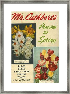 Cuthbert�s  1950s Uk Mr Cuthberts Framed Print by The Advertising Archives