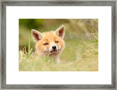 Cutie Face _red Fox Kit Framed Print by Roeselien Raimond