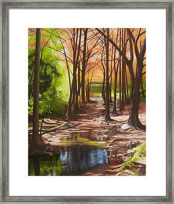 Cypress Creek In Autumn Framed Print by Gary  Hernandez