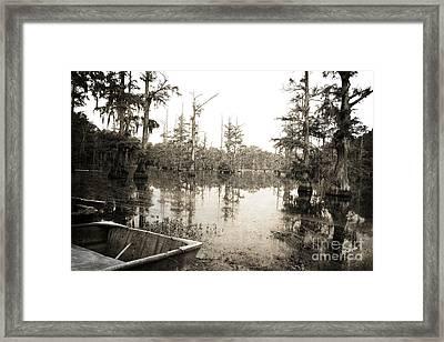 Cypress Swamp Framed Print by Scott Pellegrin