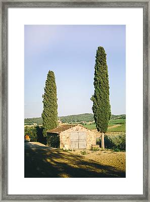 Cyprus Pair Framed Print by Clint Brewer