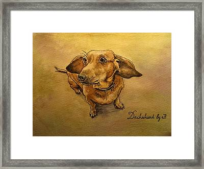Dachshund Framed Print by Juan  Bosco