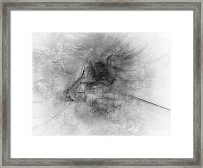 Daffodil Framed Print by David Fox