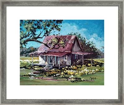 Daffodil Hill Framed Print by Cynara Shelton