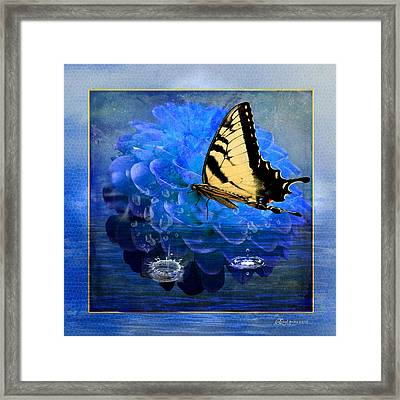 Dahlia And The Butterfly Framed Print by EricaMaxine  Price