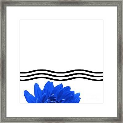 Dahlia Flower And Wavy Lines Triptych Canvas 1 - Blue Framed Print by Natalie Kinnear