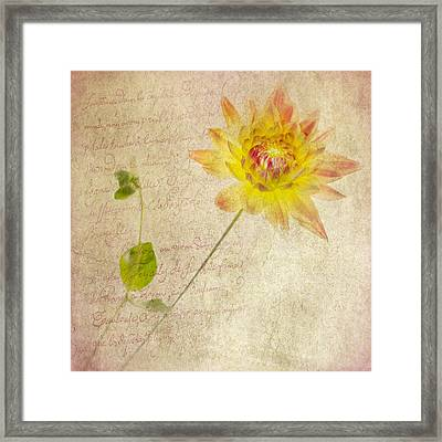 Dahlia Squared With Prose Framed Print by Rebecca Cozart