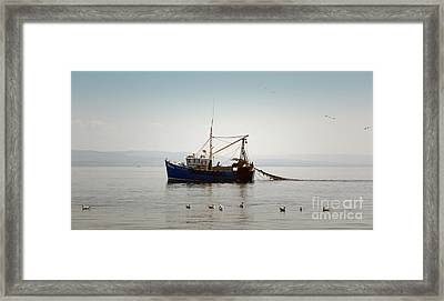 Daily Catch Framed Print by Lynn Bolt