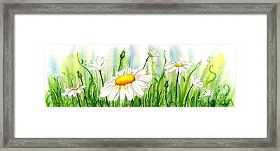 Daisy Field Framed Print by Annie Troe