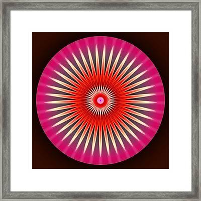 Daisy Framed Print by Visual Artist  Frank Bonilla